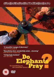 Do Elephants pray